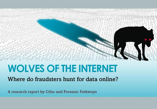 Wolves of the Internet: Where do fraudsters hunt for data online?